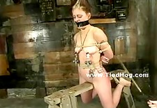 Blonde bitch tied like a hog in underground room where pervert ma