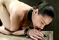 Bound babe on all four gets whipped and caned